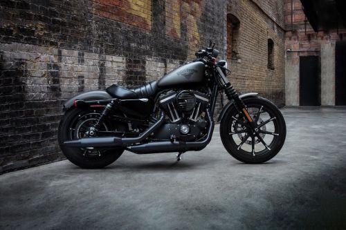 Harley Davidson Iron 883 Standard